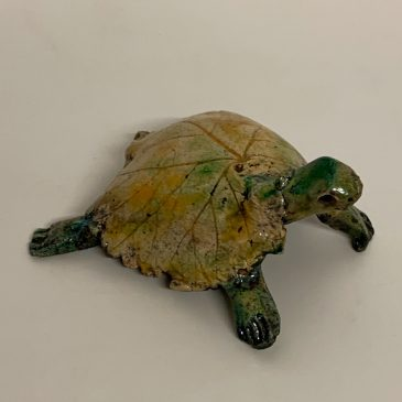 Tortue 12
