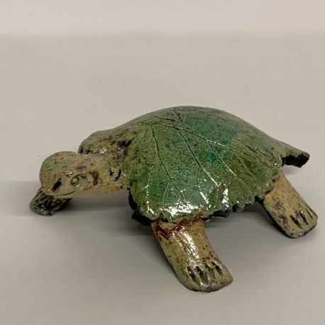 Tortue 14-1 800-800