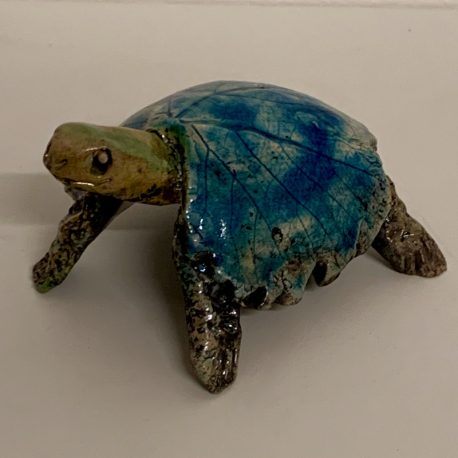 Tortue 18-1 800-800